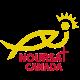 Noursat Canada Logo